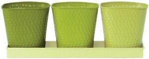 NEW Robert Allen Selby Series Colorful Metal Herb Garden Pots - Vivid Limelight