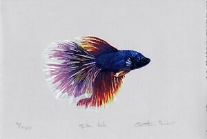 Betta Fish, limited edition Original linocut reduction print