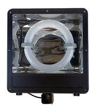 Le Vanier® Induction 300W Shoe Box Parking Lot Light Fixture Flood Light Court