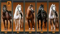"""Mr.Z Animal 12"""" Soldier Action Figure Germany Hanoverian Race War 1/6 Horse Toys"""