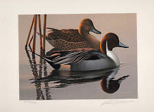 1983 Federal Duck Stamp RW50 Pintails Painting Print Medallion Ed. Phil Scholer