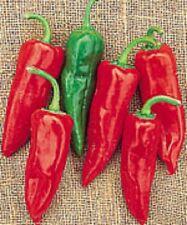 100 Pepper Seeds Chili Grande Pepper Chili Pepper
