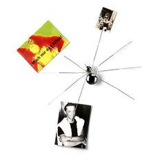 Portafoto RAGNO con ventosa - Clip porta fotografie Originale Maiuguali