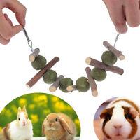 Bunny Chew Toy For Teeth Improve Dental Health 100% Natural Organic pet produc`