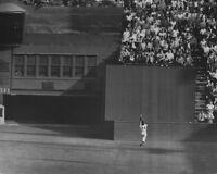 New York Giants WILLIE MAYS Glossy 8x10 Photo 1954 World Series Print The Catch