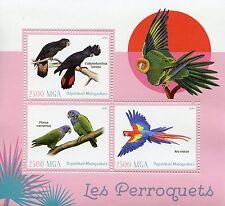 Madagascar 2016 MNH Parrots 3v M/S Scarlet Macaw Macaws Cockatoo Birds Stamps