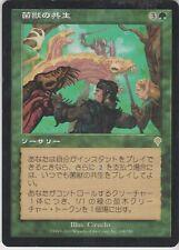 MTG 1X Saproling Symbiosis X1 Invasion (Japanese) Magic INV - Damaged