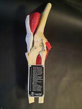Laerdal Knee Vintage Medical Plastics Laboratory Anatomical Model