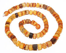 Unique Genuine Raw Natural Baltic Amber Adult Necklace for Men Mixed 50 cm