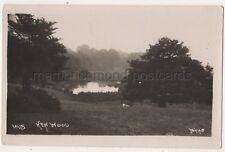 Ken Wood Hampstead, London, Johns 10115 RP Postcard B768