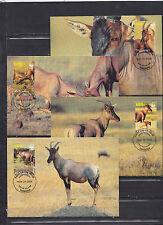 Tanzania 2006 - Maxi Cards - Dieren / Animals / Tiere  (WWF / WNF)