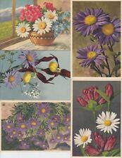FEUILLES LEAFS FLEURS FLOWERS 75 Cartes Postales Mostly Pre-1940