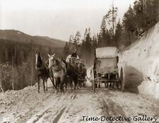 Two Stagecoaches Passing on Mt. Road, Yellowstone - c1900 - Historic Photo Print