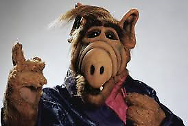 You-Can-Trust-Alf