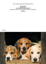 Greeting cards Puppies