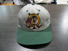 VINTAGE Tasmanian Devil Taz Snap Back Hat Cap Gray Green Hockey Looney  Tunes 90s b533a11b720e