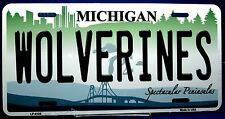 Novelty license plate NCAA Michigan Wolverines New aluminum auto tag USA LP-6108