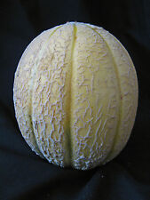 30 Tuscan Cantaloupe melon seeds Organic Selected.