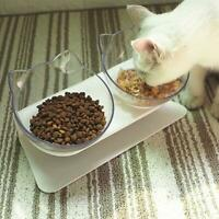 Pet Dog Cat Food Water Bowl Puppy Kitten Feeder Drinking Container w/ Stand