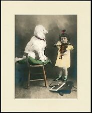WHITE POODLE WATCHES GIRL PLAY VIOLIN LOVELY DOG PRINT MOUNTED READY TO FRAME