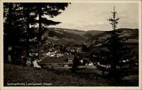 Ludwigsstadt Bayern alte AK ~1930/40 Panorama vom Wald aus Kinder ungelaufen