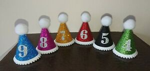 Miniature Dog/Cat Birthday Party Hat