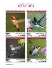 Niger 2019 fauna Colibri  birds  S201905