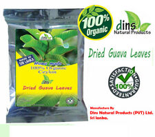 Dried Guava Leaves Fresh Green Antidiabetic Anti Hair Loss Tea 50 pcs