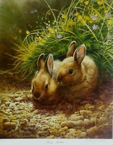 "Michael JACKSON Lithograph "" Young Rabbits "" cute bunnies Hand Signed UK Artist"