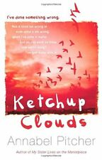 Ketchup Clouds,Annabel Pitcher