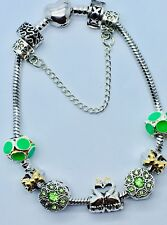 New Amazing Silver Plated Bracelet With European Charms