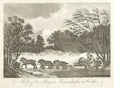 RUSSLAND - KAMTSCHATKA - HUNDESCHLITTEN - Bankes - Kupferstich 1787