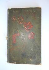 Antique Art Nouveau Photo Album Hand Painted