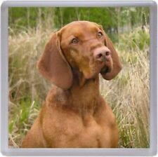 Hungarian Vizsla Coaster No 2 by Starprint