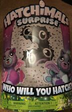 Hatchimals Surprise (Who Will You Hatch?)Twins