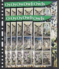 Owls Birds Wild animals 2003 Benin MNH 6 v M/s set  perf X 10 Wholesale