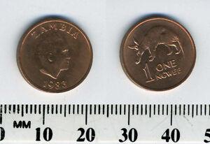 Zambia 1983 - 1 Ngwee Copper Clad Steel Coin - Aardvark