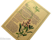 SAGE herb parchment book of shadows page poster herbal wicca print art BOS info