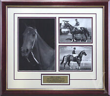 PHAR LAP THE GREATEST HORSE TO LIVE FRAMED HORSE RACING MEMORABILIA