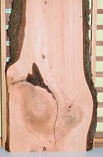 Zeder Dekobrett Sauna Thekenbrett Waschtisch Bastelholz Modellbau Tischplatte