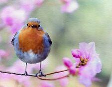 METAL FRIDGE MAGNET Robin Watercolor Purple Flower Bird Birds Flowers