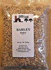 Hulled Barley Grain