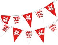Happy St George Day - White English Dragon and Lions - Bunting Banner 15 flags