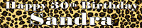 LEOPARD PRINT ANIMAL  PERSONALISED BIRTHDAY BANNERS PACK OF TWO