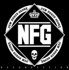 New Found Glory, Ressurection, Excellent Import