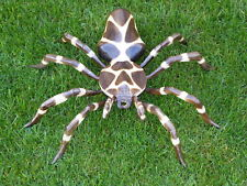 Wooden Spider Carving Wooden Hand Carved & Painted 50cm.....