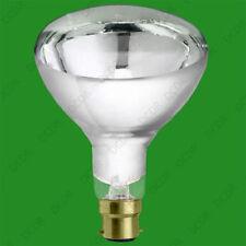 Reflector 220V with Filament Light Bulbs