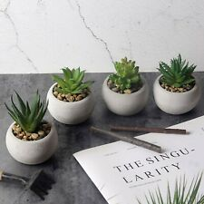 4 Pack Artificial Succulent Plant Faux Small Plant for Home & Office Decoration