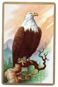 Eagle bird playing card SWAP CARD vintage