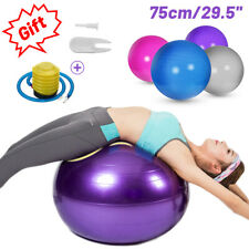 75cm Yoga Ball w/ Air Pump Fitness Pilate Workout Exercise Gym Ball Anti Burst
